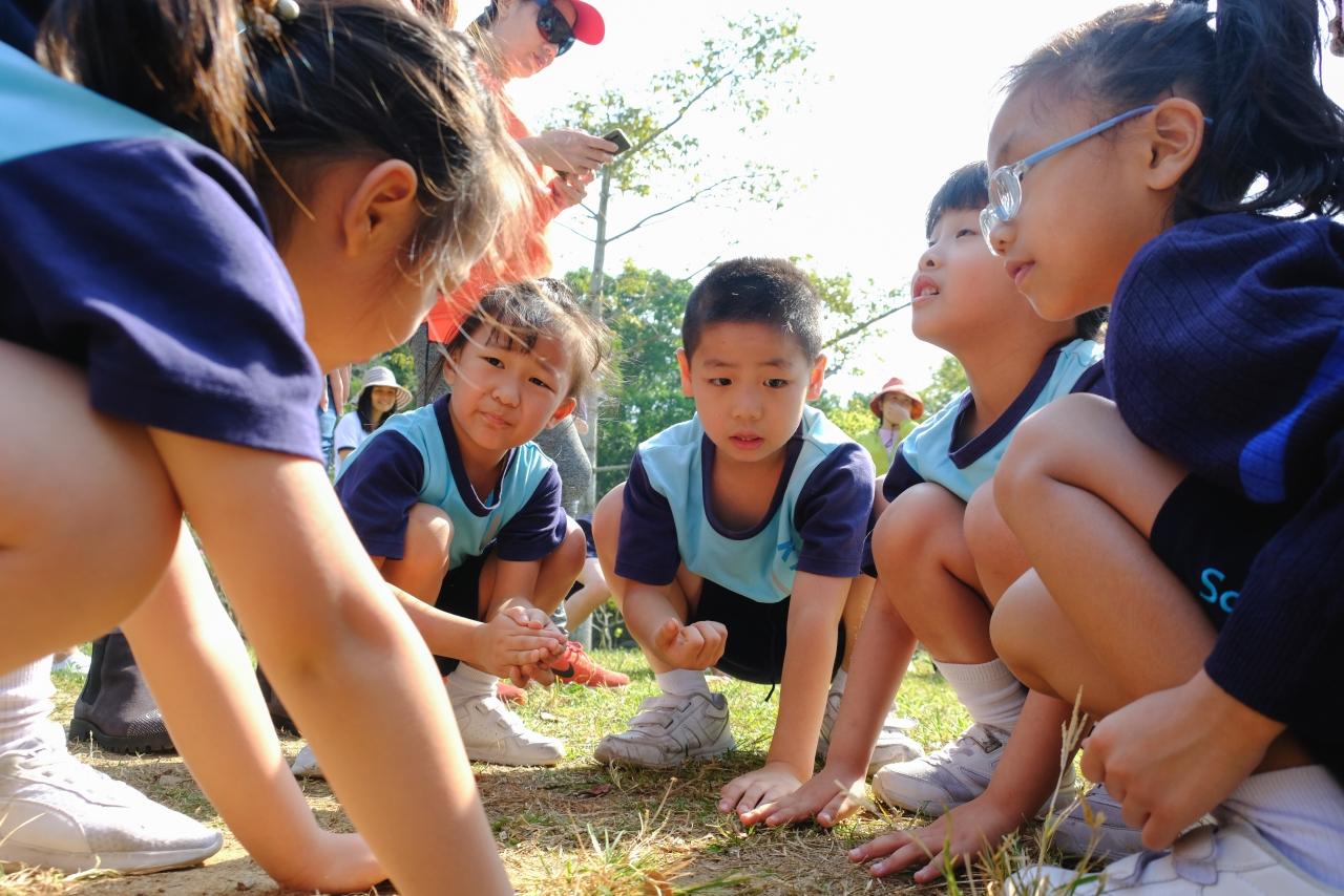 http://keito.school.hk/sites/default/files/dscf7931.jpg