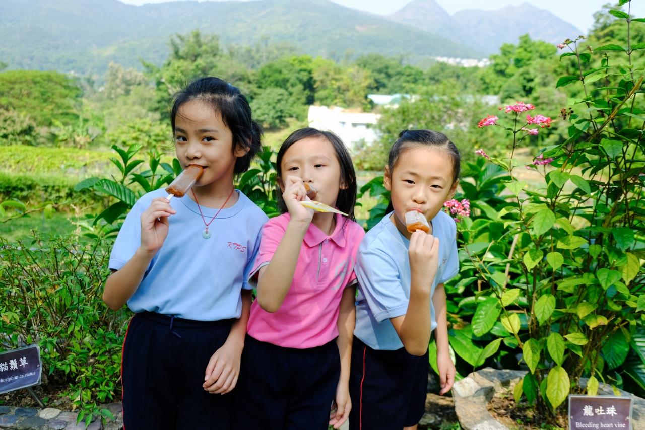 http://keito.school.hk/sites/default/files/dscf8393.jpg
