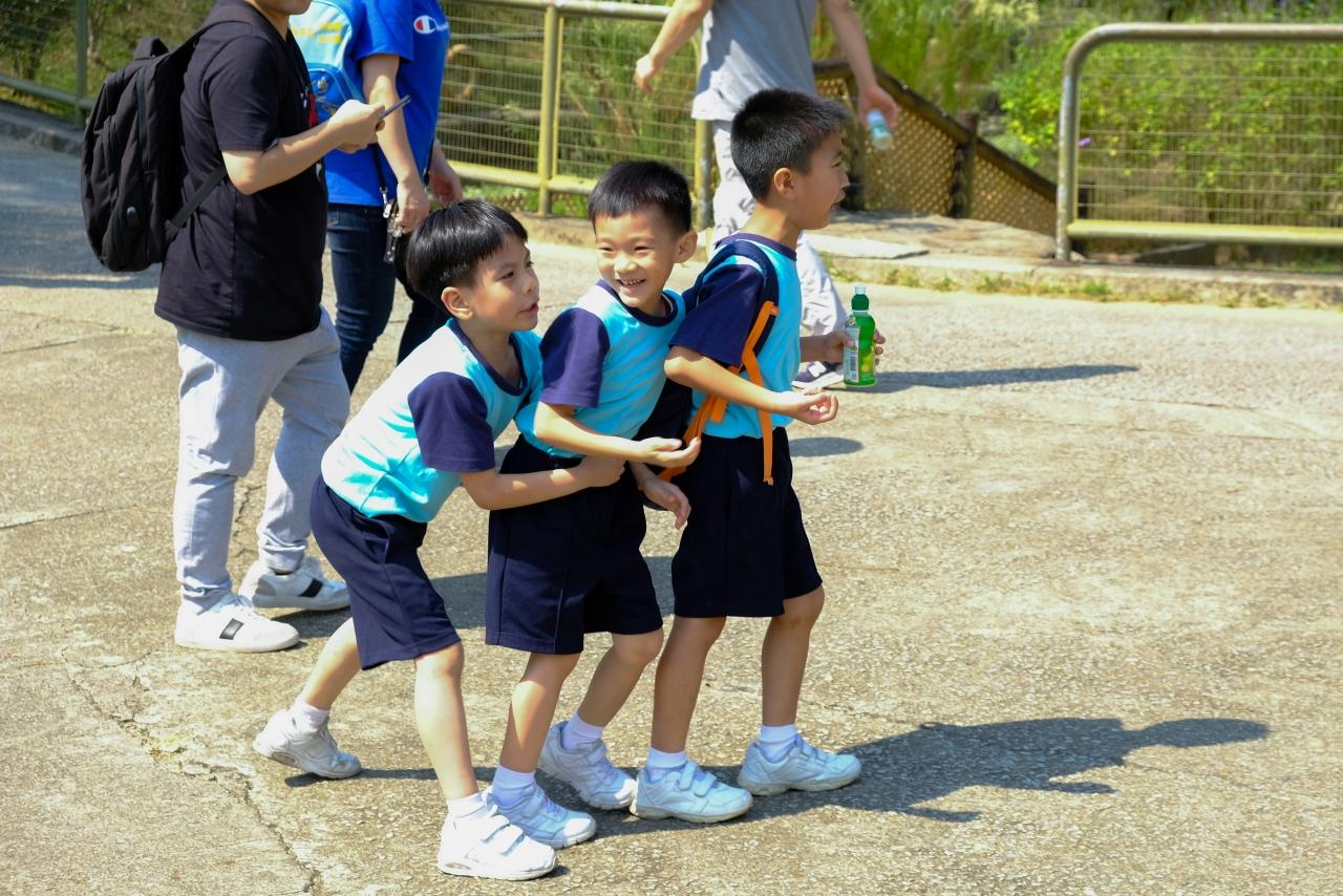 http://keito.school.hk/sites/default/files/dscf8432.jpg